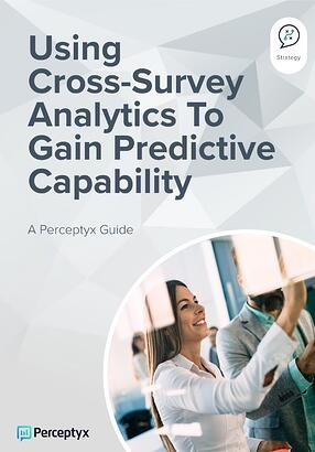 LP - Using Cross-Survey Analytics - Perceptyx