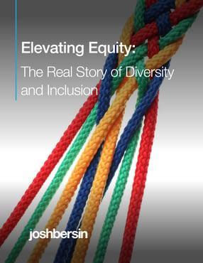 elevatingequity-coverthumb